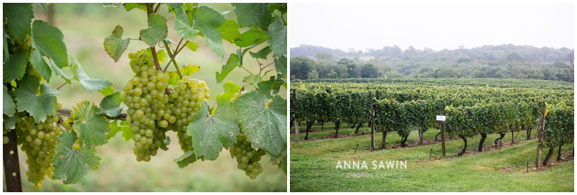 StoningtonVineyard_AnnaSawinPhotography_WeddingSept2014_017