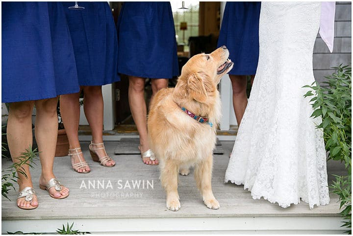 Stonington_Beach_Wedding_WadawanuckClub_AnnaSawinPhotography_StoningtonCT_NavyBlueBridesmaids_ConnecticutShoreline_054