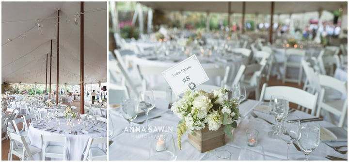redmaplevineyard_wedding_hudsonrivervalley_wedding_annasawinphoto_july_109