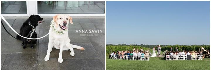 saltwaterfarmvineyard_wedding_Summer_annasawinphotography_stonington_019